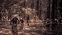 EXCLUSIVE EPIC GALLERY: STAGE FIVE