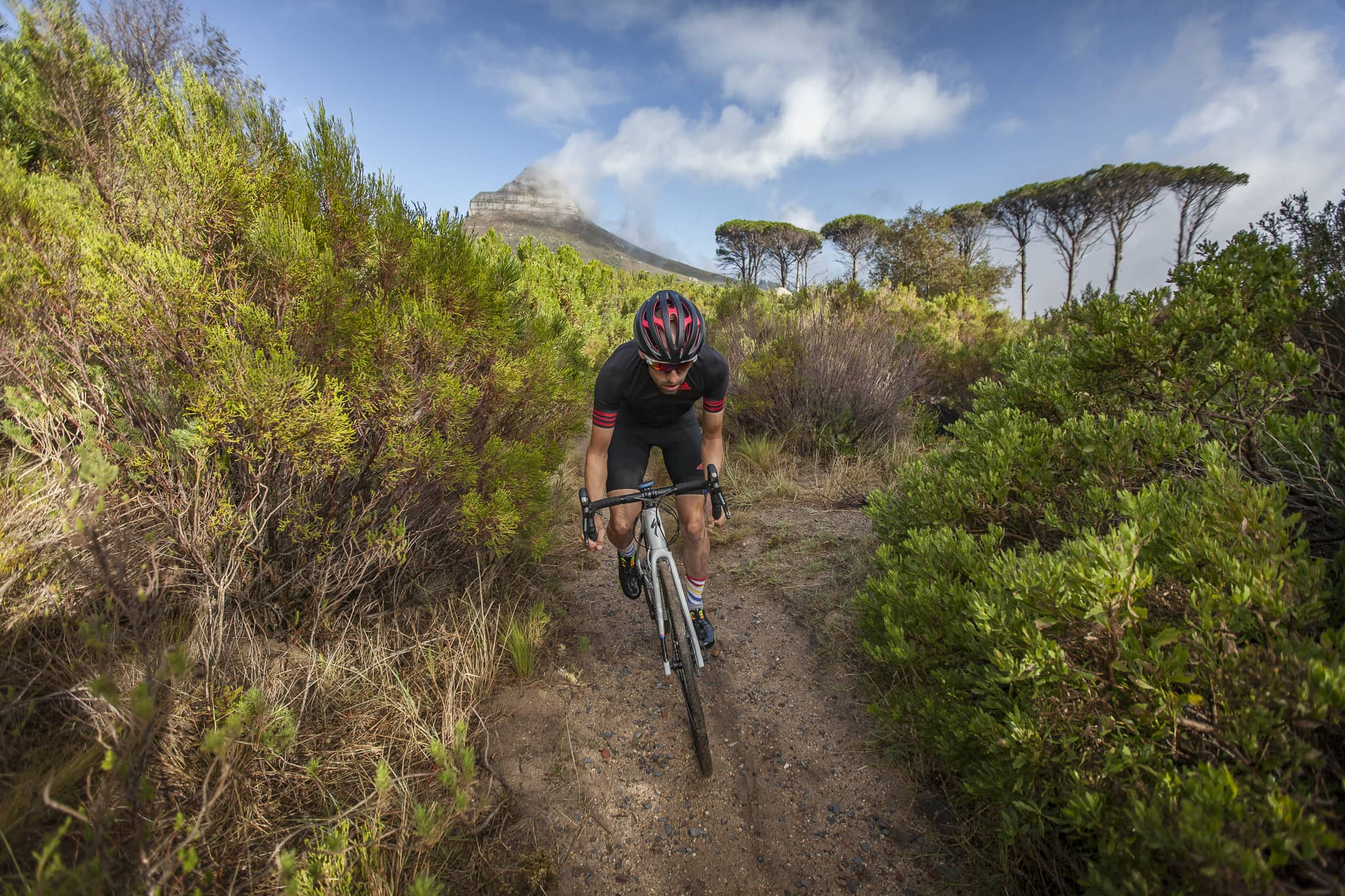 specialized-diverge-44