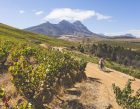 cape-town-cycle-tour-mtb-challenge-5-ewald-sadie