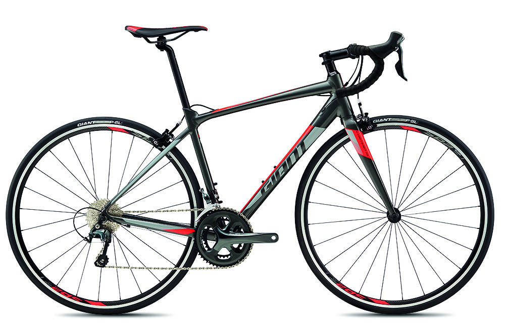 BUDGET BIKES GIANT CONTEND SL2