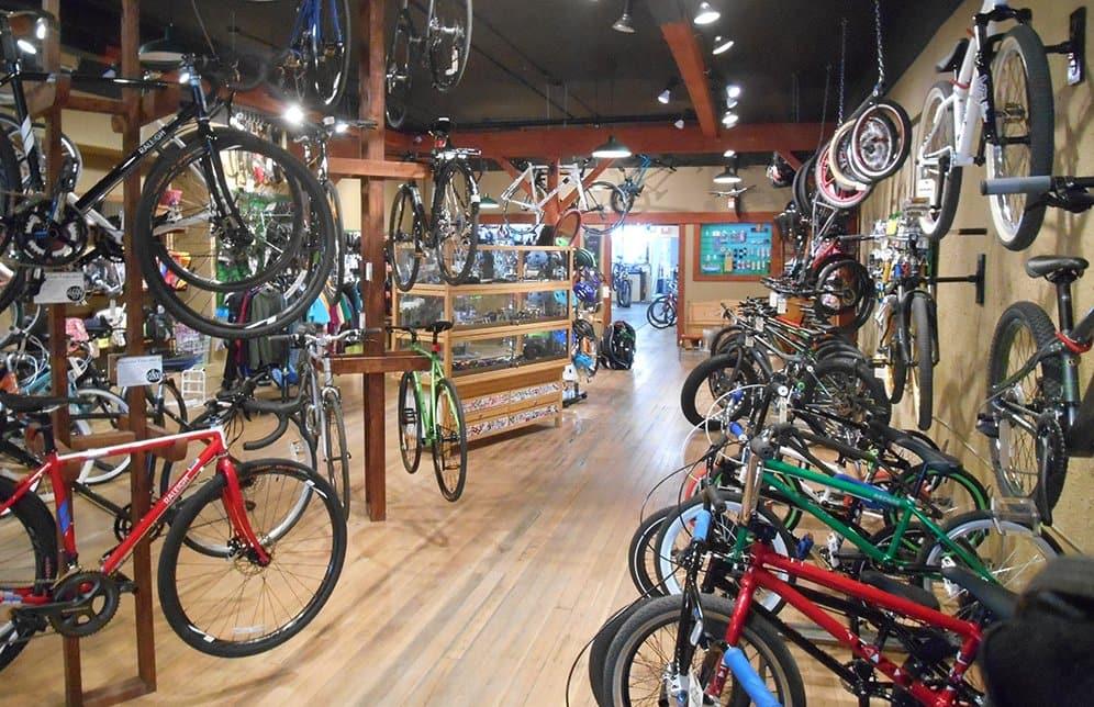 bike buying bike fit