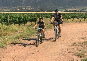 Robertson Winery MTB