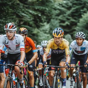 summit Roglic